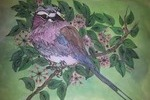 http://temp_thoughts_resize.s3.amazonaws.com/6b/75c780194b11e4b4f4c75b4b2ea7e5/EXHIBIT-30---LILAC-AND-BLUE-BIRD.jpg